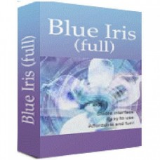Programski paket BlueIris Licenca Version 4